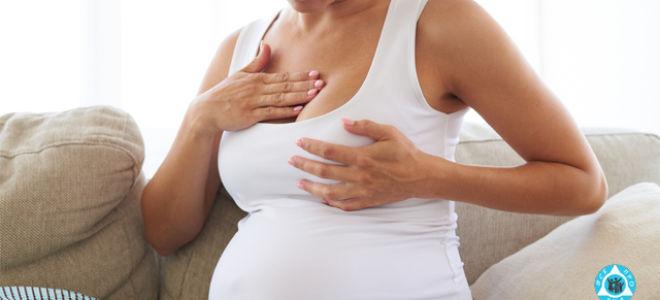 Чешется грудь при беременности: причины и лечение зуда грудных желез