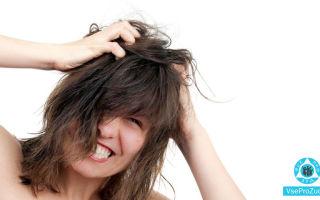Чешется кожа головы: причины зуда на голове, лечение, что делать