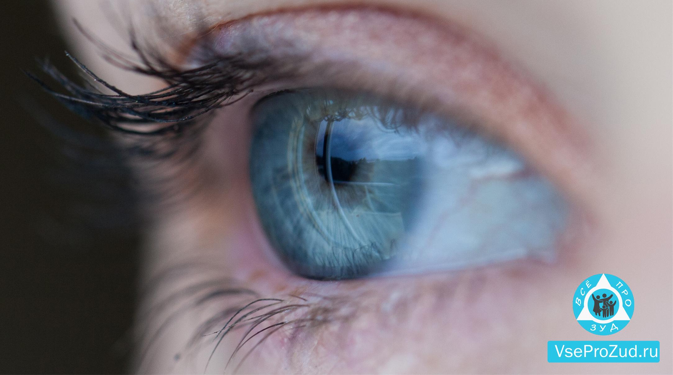 Здоровый глаз человека